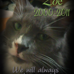 Rest In Peace, Mr. Zo