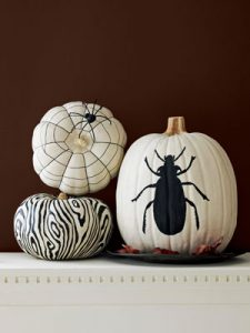 CLX-black-and-white-pumpkin-v2-mdn