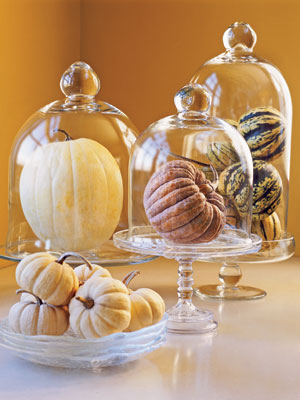 pumpkinideas glasscloche mdn Cool Halloween Pumpkins